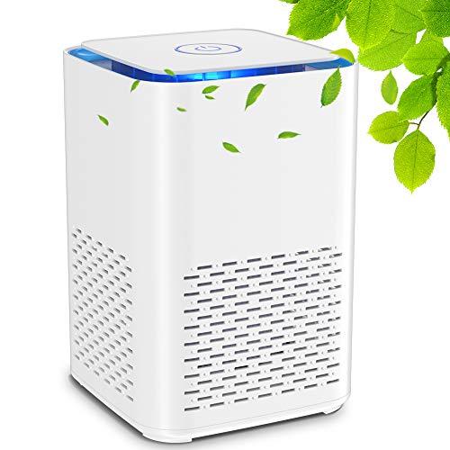 Luftreiniger mit Echtem HEPA-Filter und Aktivkohlefilter,Leiser USB-Luftfilter mit Aromatherapie Funktion Nachtlicht für Wohnung Raucherzimmer