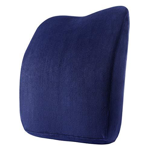 Healifty Lendenkissen Stuhl - Lordosekissen Auto - Lordosenstütze Orthopädische Rücken Kissen Memory Foam Polster für Bürostühle und Auto Sitze(Blau)