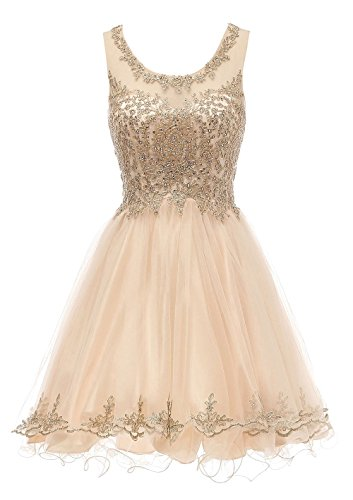 8th Grade Dance Dresses for Teens Tulle Puffy Short 15 Party Dress Champagne,8
