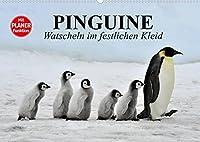 Pinguine - Watscheln im festlichen Kleid (Wandkalender 2022 DIN A2 quer): Koenigspinguine in ihrem natuerlichen Lebensraum (Geburtstagskalender, 14 Seiten )