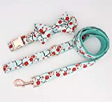 XUXIN Zhaochen Collar de Perro Floral Pajarita con Hebilla de Metal Grande y pequeño Perro y Collar del Gato for Mascotas Collar de Perro (Color : Collar Bow Leash, Size : M(30 45cm Length))