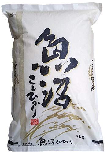 精米 新潟県 魚沼産 コシヒカリ 令和2年産 新米 白米 米 コメ (5�s×1袋)