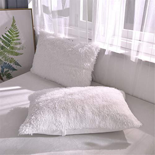 Soukach 2 PC Fluffy Faux Fur Pillow Case,Cozy Shaggy Plush Pillow Shams, Furry Crystal Velvet Pillow Cover,Luxury Long Fleece Decorative Pillowcases with Zipper Closure (White, Queen)