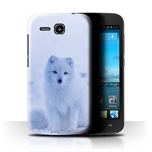 Handy Hülle kompatibel mit Huawei Ascend Y600 Süß Baby Tier Fotos Weißer Polarfuchs Welpe Transparent Klar Ultra Dünne Handyhülle Hülle Cover