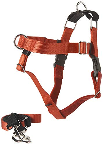 2 Hounds Design Freedom No-Pull Dog Harness with Leash | X-Small - XX-Large Adjustable Pet Harness for Small and Large Breeds | Made in USA (1