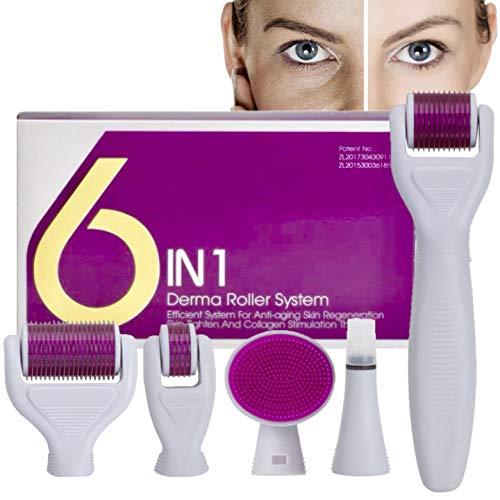 Dermaroller,AMAYGA Dermaroller Set,6 in 1 Micronadeln Derma Roller für mit Micro-Needling für Anti Falten,Schwangerschaftsstreifen,Haarausfall und Anti Falten