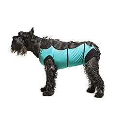 Black Schnauzer wearing a teal surgical suit by Vet Med Wear.