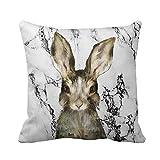 Yivise Pascua Sofá Cama Decoración Del Hogar Funda de Almohada Mármol Funda de Almohada Festival Huevos Conejito Pillow Cover Cushion(C)