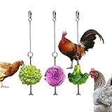 Vehomy Chicken Veggies Skewer Fruit Holder for Hens Pet Chicken Vegetable Hanging Feeder Toy for Hens Large Birds 3PCS