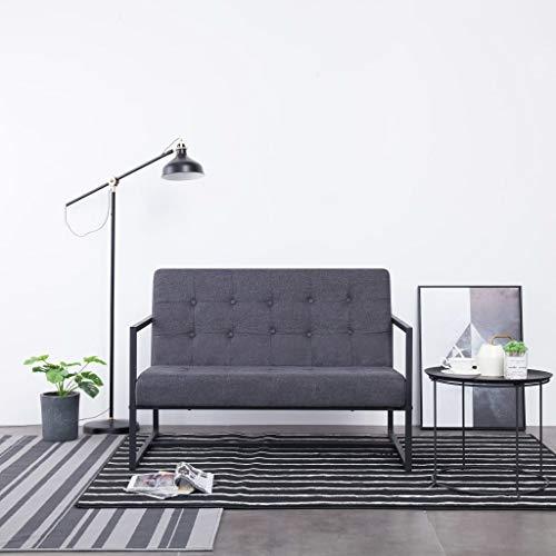 Festnight 2-Sitzer-Sofa gartensofa | gartenbank mit stauraum mit Armlehnen Dunkelgrau Stahl und Stoff