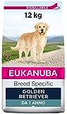 Eukanuba Breed Specific Alimento Secco per Golden Retriever Adulti, Cibo per Cani Adattato in Modo Ottimale alla Razza 12 kg