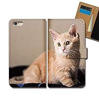 AQUOS sense4 lite SH-RM15 ケース 手帳型 ねこ写真 手帳ケース スマホケース カバー 猫 ネコ ねこ 動物 アニマル E0310010115501