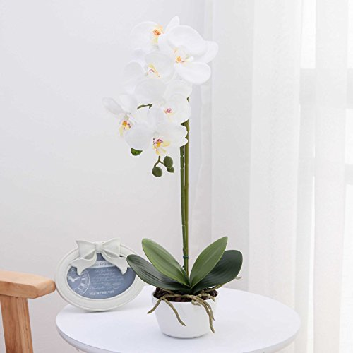 LIVILAN Silk Phalaenopsis Flower Arrangement Artificial Orchid Flowers with White Vase, Wedding Party Dining Table Centerpiece Decor, White, Height 18