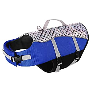 Queenmore Dog Life Jacket High Floatation Pet Life Vest Refelective Cute Fish Scale for Swimming, Boating, Canoeing for Small Medium Dogs Blue, M