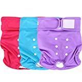 Wegreeco Washable Reusable Premium Dog Diapers, Large, Bright Color, for Female Dog, Pack of 3