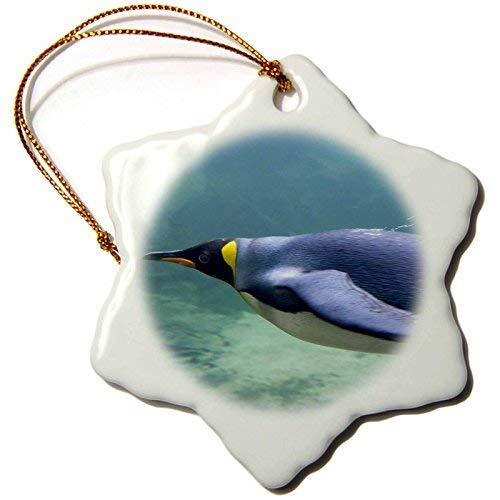 Dant454ty Südafrika, Kapstadt, Aquarium König Pinguin Cindy Miller Hopkins Christbaumschmuck Weihnachtsdeko