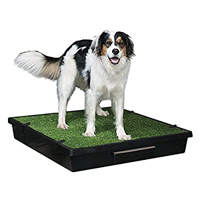 PetSafe Pet Loo Portable Indoor/Outdoor Dog Potty
