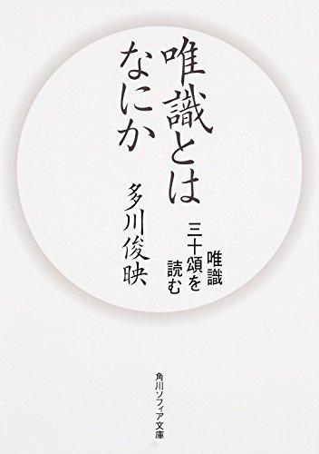 唯識とはなにか 唯識三十頌を読む (角川ソフィア文庫)の詳細を見る
