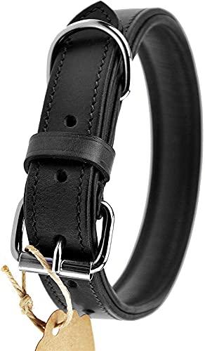 XIAOSHI Collar de Perro de Cuero Collar de Cuero Perro (Color : Schwarz, Size : M - 28-36cm)