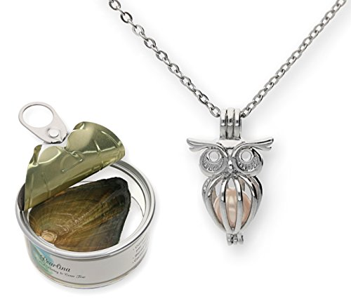 Pearlina Owl Cultured Pearl in Oyster Necklace Set Silver-tone Cage w/Stainless Steel Chain 18'
