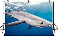 HD 7x5ftサメの背景水族館の写真の背景のための白いサメの青い水海洋生物の映画の写真の背景LY255