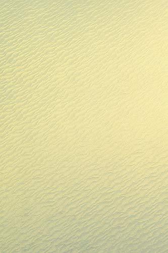 Netuno 20 x 250 g de cartón nacarado de vainilla DIN A4 210 x 297 mm Aster Metallic Gold Ivory Sea, cartulina perlada brillante, efecto metálico, ideal para tarjetas de boda, tarjetas de invitación