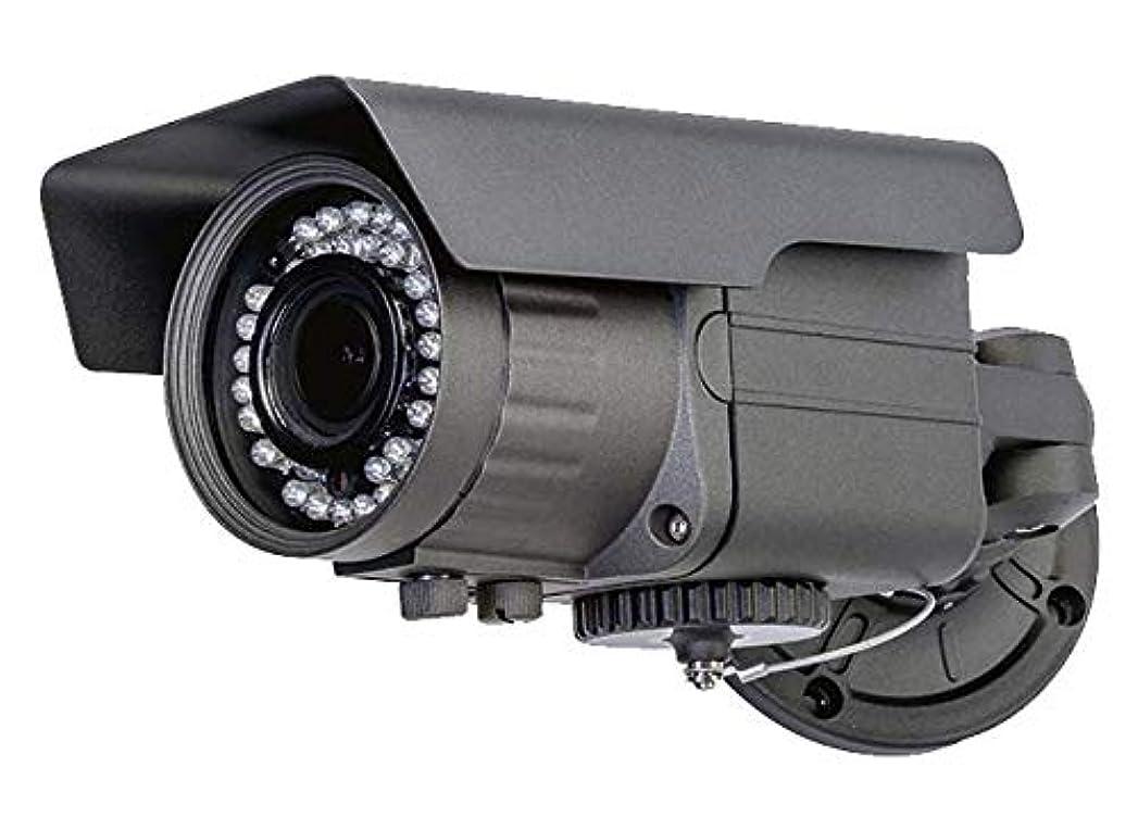 気質衣装クリームSD録画機能搭載防犯カメラ ASD-01