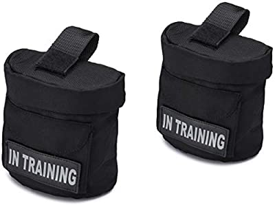 """In Training Harness Vest Saddle Bags with """"In Training"""" Hook Patches - IT Backpack with Patch - Quality Back Pack Pouch with Pockets - Saddlebag for Therapy or Service Dog in Training (In Training)"""