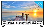 HKC 43F3 TV LED da 109 cm (43 pollici) (Full HD, Triple Tuner, CI +, HDMI, lettore multimediale tramite USB 2.0) [classe energetica A]