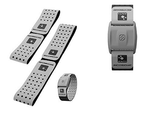 Scosche Rhythm+ Replacement Strap - Fits Scosche Rhythm+ Optical Heart Rate Monitor Armband (Gray)