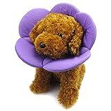 Best Dog Cones - Alfie Pet - Kora Recovery Collar Review
