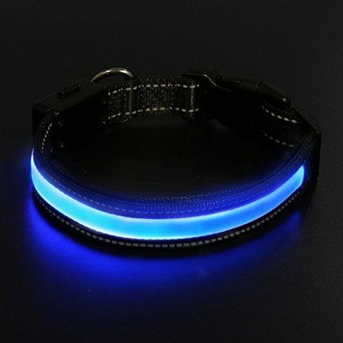 LaiXin LED Hunde Halsband, Halsband Hund Leuchtend Aufladbar Solaraufladung oder USB-Laden mit USB-Kabel Hundehalsband Nylon Leuchtender wasserdichte Halsbänder LED Verstellbar für Haustiere Blau