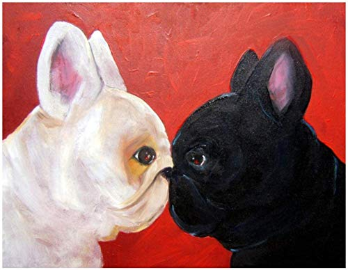 """Paint by Numbers DIY Acrylic Painting Kit for Kids & Adults 16"""" x 20""""with 3 Brushes & Bright Colors Black and White French Bulldog (Frame)"""