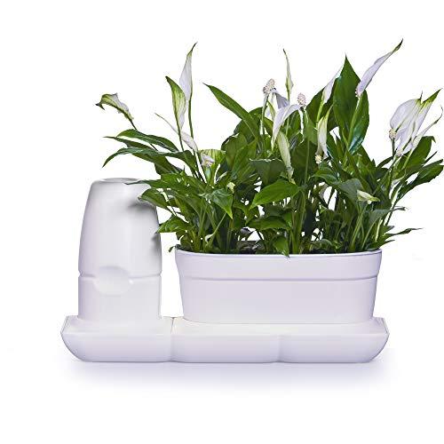 Minigarden Basic S UNO, innovatives Starterset für einfachste Pflanzenpflege; ausgestattet mit automatischem Bewässerungs- und Düngesystem; ideal zum Aufstellen auf Fensterbänken und Tischen (Weiß)