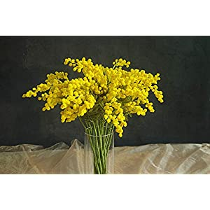 ShineBear 20 PCS Australia Acacia Small Style Yellow Mimosa Pudica Spray Artificial Flower Wedding Flower Party Event Decor – (Color: 20 Pieces Yellow, Size: Total 57cm)