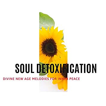 Soul Detoxification - Divine New Age Melodies for Inner Peace