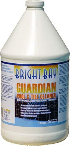 Guardian Pool & Tile Cleaner, Gallon Bottle 1/Case -