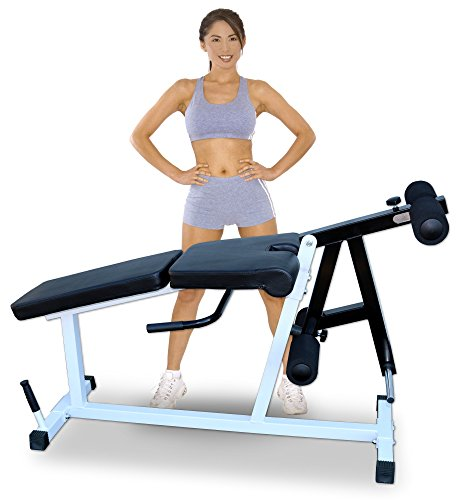 Deltech Fitness Leg Extension/Leg Curl Machine
