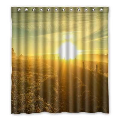 dalliy Custom Sommer, Sonne Duschvorhang Polyester 167cm x 183cm, Polyester, a, 168 x 183 cm