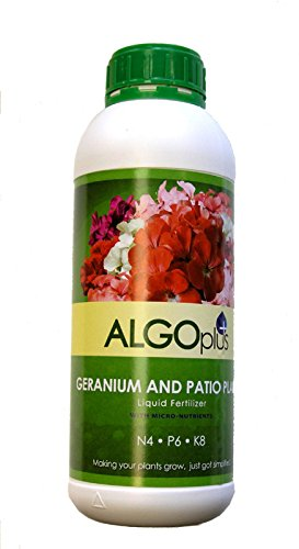 ALGOplus Geranium and Patio Plants Liquid Fertilizer for Houseplant and Organic Garden - Plant Food with Micro-Nutrients NPK N4 P6 K8 - 1-Liter Bottle