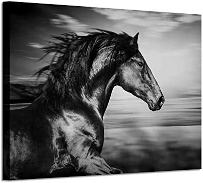 Horse Picture Animal Art Prints Wild Black Stallion Graphic Artwork on Canvas for Walls 36 W product image