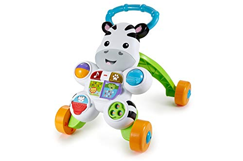 Fisher Price- Zebra de Juguete, Multicolor (Mattel 900 DLF00)