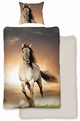 SkyBrands Renforcé Bettwäsche Pferde 135x200cm+80x80