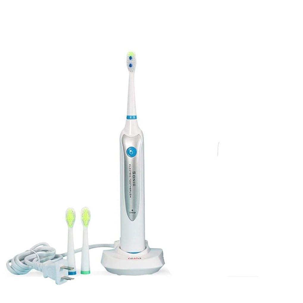 電動歯ブラシ 歯ブラシ電動歯ブラシ防水電動歯ブラシ充電式音波電動歯ブラシ (色 : Waterproof IPX7)