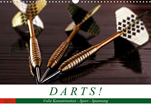 Darts. Konzentration - Sport - S...