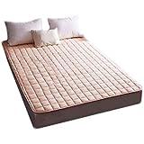 FTFTO Productos para el hogar Colchón Lavable a máquina Cama Transpirable Colchón cómodo para aliviar la presión de Apoyo para Dormir (Tamaño: 180 * 200 CM)