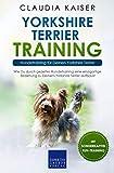 Yorkshire Terrier Training: Hundetraining für Deinen Yorkshire Terrier