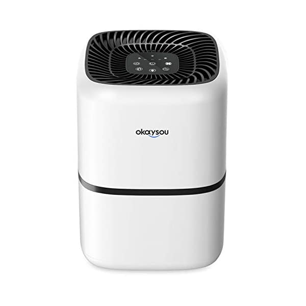 Okaysou AirMic4S Medical Grade Air Purifier for Home Allergies and Pets, Smokers,...
