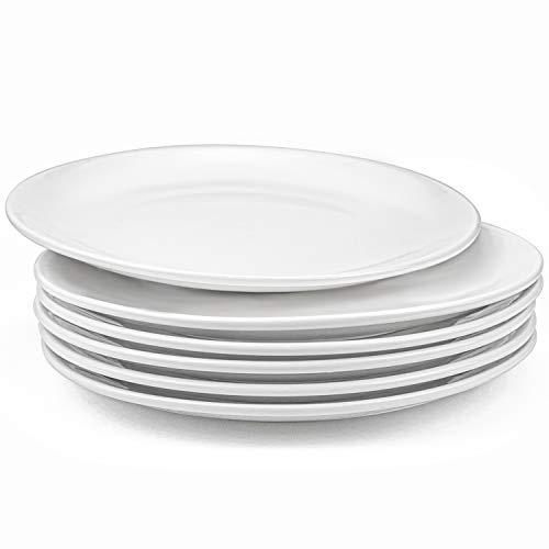 Foraineam 6 Pieces Porcelain Dinner Plates Approximate 10 Inch Round Salad Plate White Dinnerware Dish Catering Serving Plates
