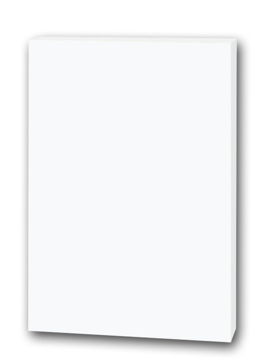 "Flipside Products 20300 Foam Board, 20"" x 30"", White (Pack of 25): Industrial & Scientific"